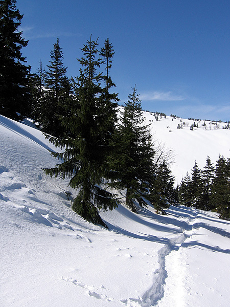 Wyprawa na Śnieżkę